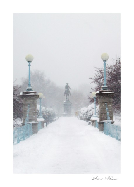 Swan Lake Bridge George Washington Statue Boston Public Garden SDSS 0912