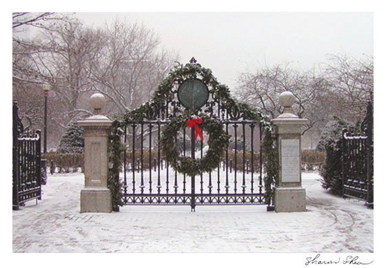 Front Gate Design Get Domain Pictures
