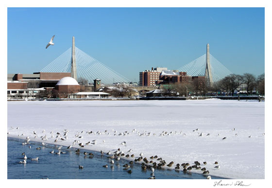 Zakim Bridge, Charles River CCNESS 1060