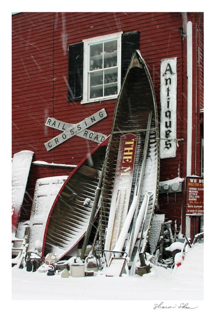 Antiques In Snow SDSS 1207