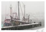 Fishing Boats. Vincie N. SDSS 1203