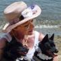 Beach w Dogs