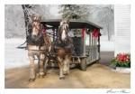 Horse Trolley Old Sturbridge Village CCNESS 1042