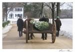Ox Cart Journey Old Sturbridge Village CCNESS 1043