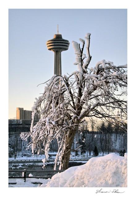 Skylon Tower Niagara Falls, Canada SDSS 1109